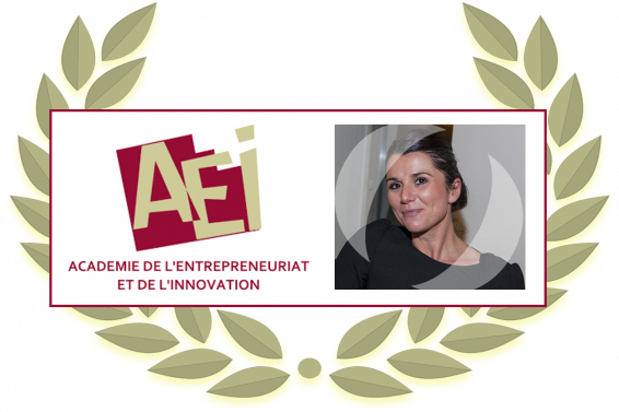 Sonia Boussaguet awarded for best conceptual article by the AEI