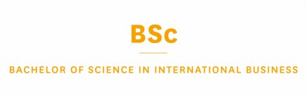 BSc in International Business